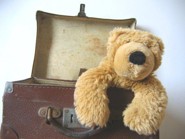 travel-teddies-series-no-1555507